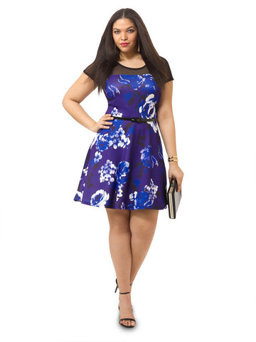 Azul Rose Mesh Insert Skater Dress