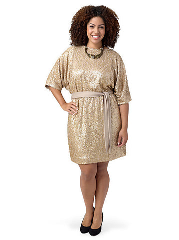 Belted Sequin Dress