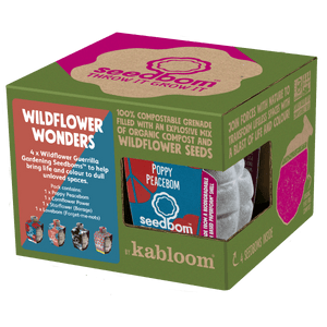 Wildflower Wonders Seedbom Gift Box - 4 Pack