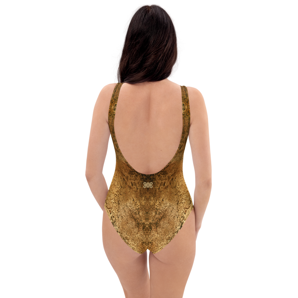 Rêves d'Or One-Piece Swimsuit