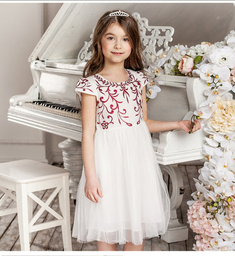 Girls Mesh Princess Dress Cute Dresses