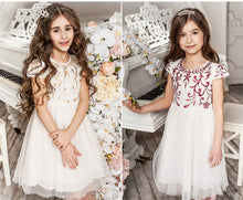 Load image into Gallery viewer, Girls Mesh Princess Dress Cute Dresses