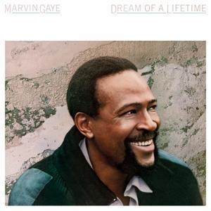 Dream Of A Lifetime on Marvin Gaye artistin vinyyli LP.