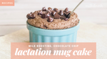 Microwave Breastfeeding Mug Cake with Chocolate Chips