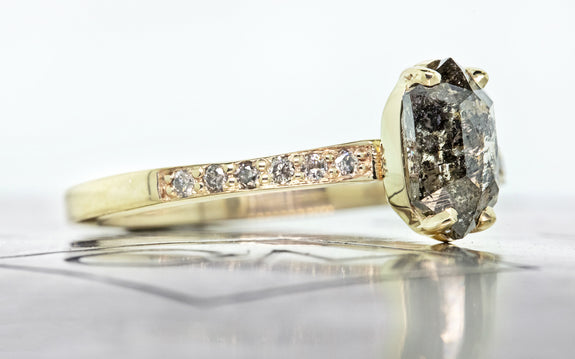 1 carat salt and pepper diamond with six pave diamonds on each side set in 14 karat yellow gold on Chinchar Maloney metal plate side view on white background