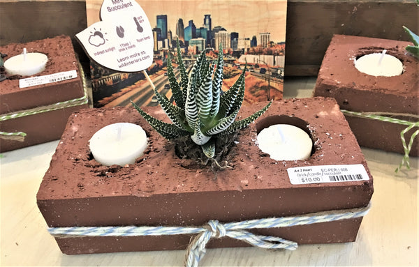 Cactus and candles in a brick from Art 2 Heart Gift Shop in Hamel MN