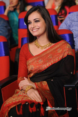 Bollywood Designer Diya Mirza Milti Color Embroidered Silk Saree