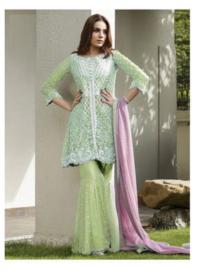 Awesome Designer Embroidary Work Net Material Embroidary Work Sharara