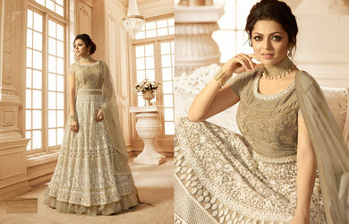 Dignified Cream Net + Georgette Embroidery Work With Long Anarkali Suit