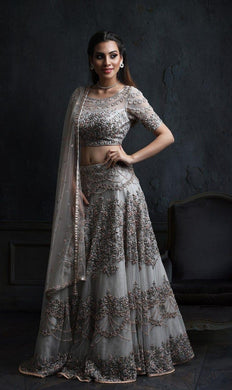 Fency Grey Hevvy Tissue Net With Embrodari Lehenga