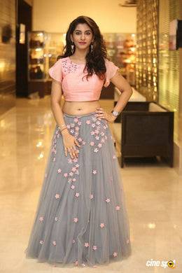 Trendy Looking Grey And Pink Combination Net Lehenga Choli
