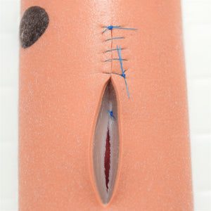 "Product Bundle: Small RealSuture 5-Layer Suture Pad & 5"" Intestine Segment"