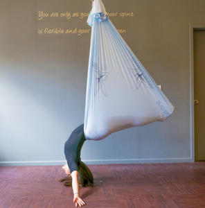 The Harrison AntiGravity® Hammock Kit PREORDER