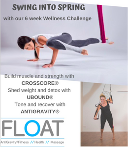 6 Week Wellness Challenge