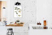 Load image into Gallery viewer, Hooded Warbler Print by John Audubon