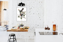 Load image into Gallery viewer, Cat Bird Print by John Audubon