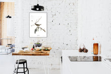 Load image into Gallery viewer, Red-Eyed Vireo Print by John Audubon