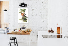 Load image into Gallery viewer, Mangrove Cuckoo Print by John Audubon