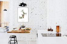 Load image into Gallery viewer, Berwick's Long Tailed Wren Print by John Audubon