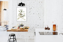 Load image into Gallery viewer, Vireo Solitarius Solitary Flycatcher Print by John Audubon