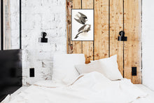 Load image into Gallery viewer, Black-Winged Hawk Print by John Audubon