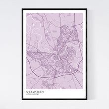 Load image into Gallery viewer, Shrewsbury City Map Print