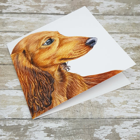 Dachshund Greeting Card - Long Haired Red Dachshund
