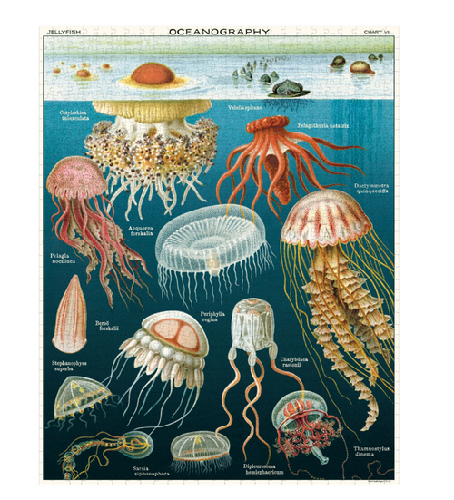 Cavallini & Co. Jellyfish Puzzle