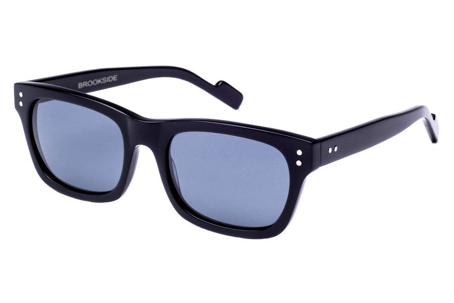 Crimson Visual : Brookside - Black / Smoke Polarized