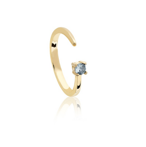 Pisces Zodiac Ring in Gold