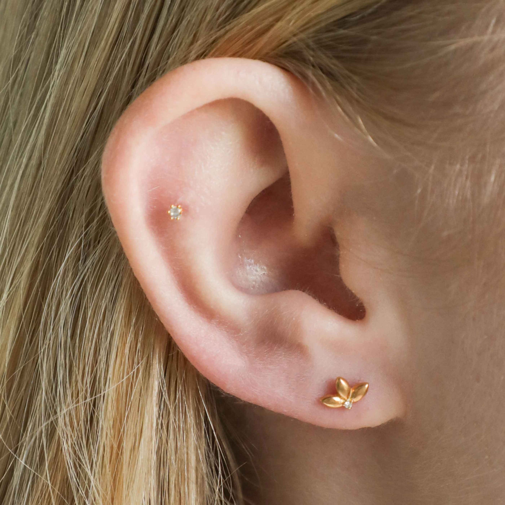Botanist Barbell in Gold worn in first lobe piercing