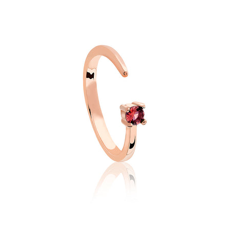 rose gold capricorn zodiac ring