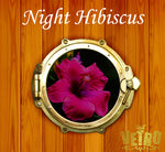 VL323 Night Hibiscus Vetro No.19 Pod Gel