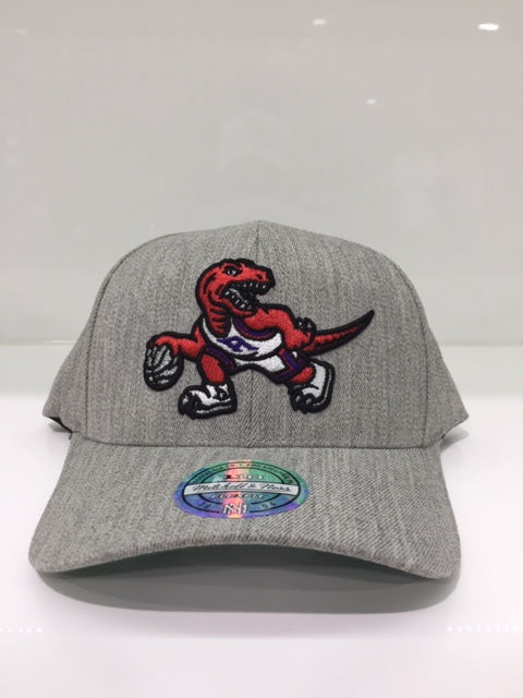 Raptors Team Heather 110 Snapback Grey