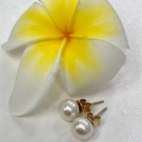 Cultured Freshwater Pearl 9ct Earring Studs