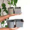 Cement Molds Succulent Plants Pot