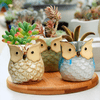 Cute Wise Owl Flower Pots