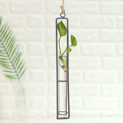 Garden Glass Hydroponics Transparent Hanging Flower Pot