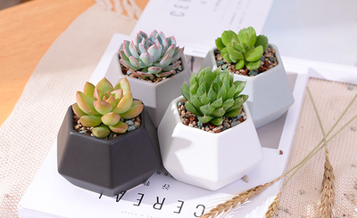 Hexagon Ceramic Planters Set - 4pcs