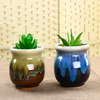 Porcelain Succulent Pots For Home Garden