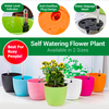 Self Watering Plastic Plant Pot
