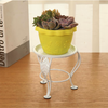 Succulent Planter Flower Pot Metal Holder