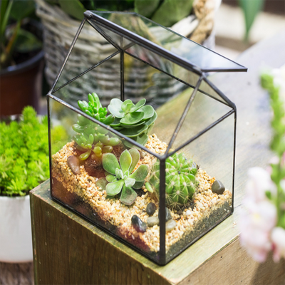 Beautiful House-shaped Glass Terrarium for your home garden.