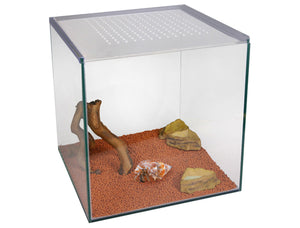 Hermit crab starter kit