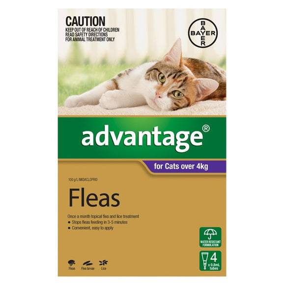 Advantage 4pk for cats over 4kg.