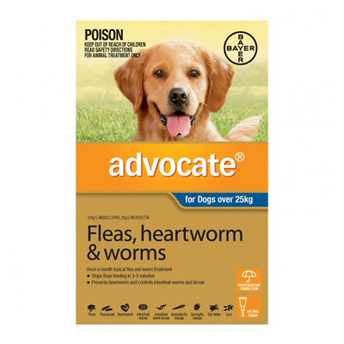 Advocate foe dogs over 25kg, 6 pack.