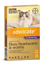Advocate for Cats over 4kg, 6 pack.