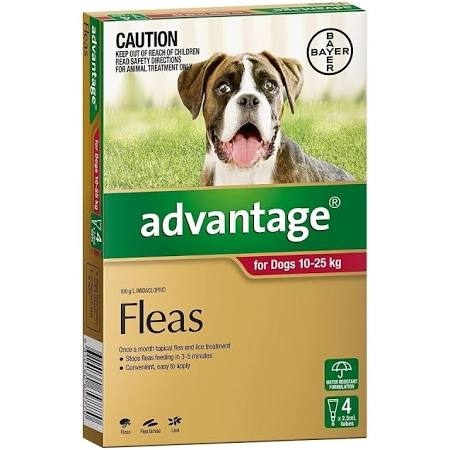 Advantage 4pk for dogs 10-25kg.