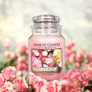 FRESH CUT ROSES -Yankee Candle- Giara Media