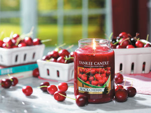 BLACK CHERRY -Yankee Candle- Giara Media